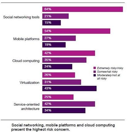 IBM Risk Study 2010