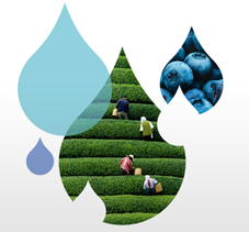 IBM Water Mgmnt Icon